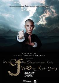 Master Of The Shadowless Kick Wong Kei-Ying